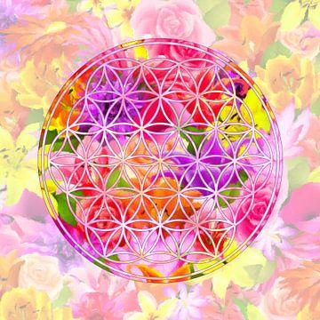Blume des Sommers von Marion Tenbergen