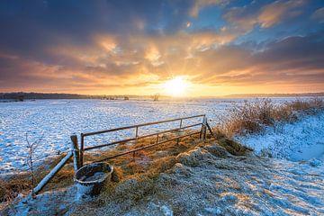 Winter in Drenthe mit einem schönen Sonnenaufgang und Schnee über den Wiesen. von Bas Meelker