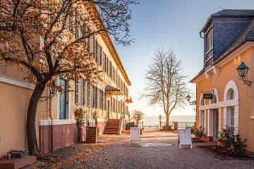 Herbstnachmittag am Schloss Johannisberg sur Christian Müringer