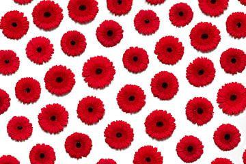 Rode bloemen muur von Hermen Buurman