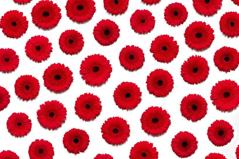 Rode bloemen muur van Hermen Buurman