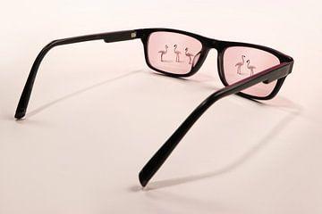 door een roze bril van