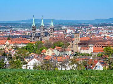 Uitzicht op de kathedraal van Bamberg in Franken van Animaflora PicsStock