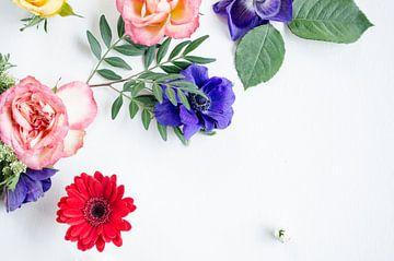 Gerbera Transvaal Daisy, Rozen en Anemonen van Nicole Schyns