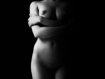 Torso einer nackten Frau in Low-Key von Art By Dominic