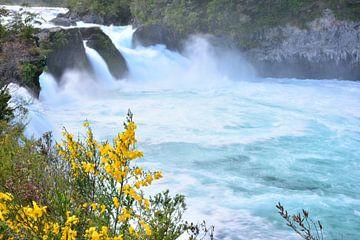 De dynamiek van watervallen en rivieren, Puerto Varas Chili van Bianca Fortuin