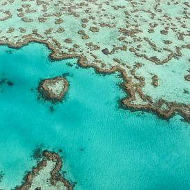 Australien Heart Reef von Robert Styppa