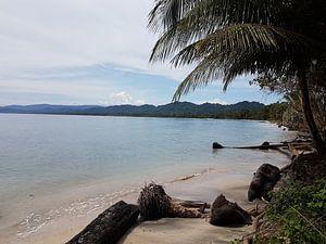 Caraïbische strand van Joelle van Buren