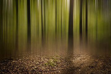 Door de bomen het bos niet meer zien van Geert-Jan Timmermans
