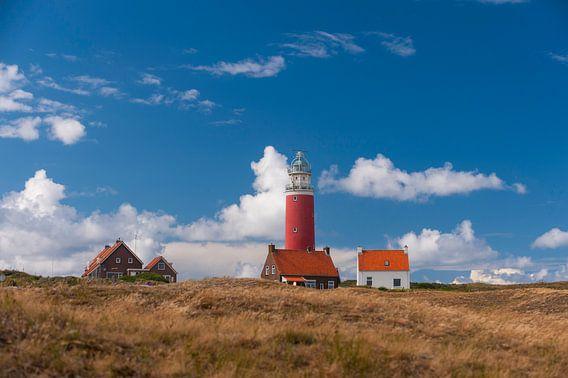 Texel Landschap van Brian Morgan