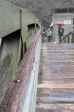 brug van Annemiek Tamminga