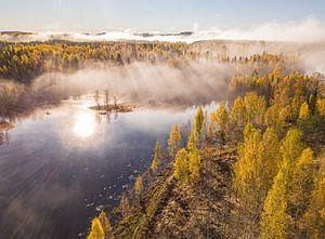 Herfst en mist ochtend in Zweden, drone shot van Ramon Lucas