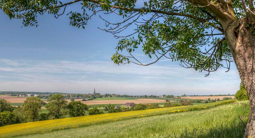 Panorama Mamelis en Vijlen van John Kreukniet
