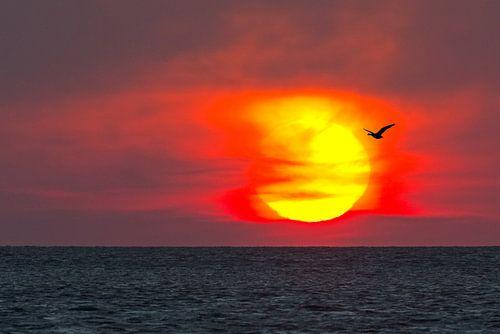 Zonsopkomst boven de Waddenzee van