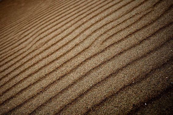 Zand ribbels