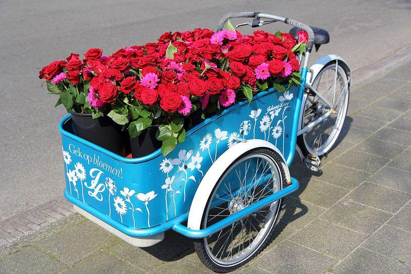 Bakfiets met rode rozen van Carel van der Lippe