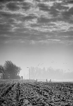 einsamen Radfahrer von Roel Beurskens