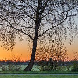 zonsopkomst van Karin Broekhuijsen