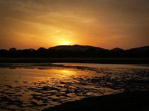 Sunset at Minneriya National Park Sri Lanka