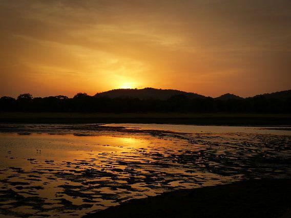 Sunset at Minneriya National Park Sri Lanka van Inez Wijker