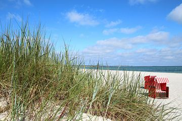 Am Darßer Strand von Ostsee Bilder