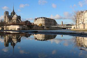 Notre Dame reflectie bij de Seine van Michaelangelo Photo