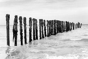Golfbreker met Aalscholvers bij Omaha Beach (zwart-wit)