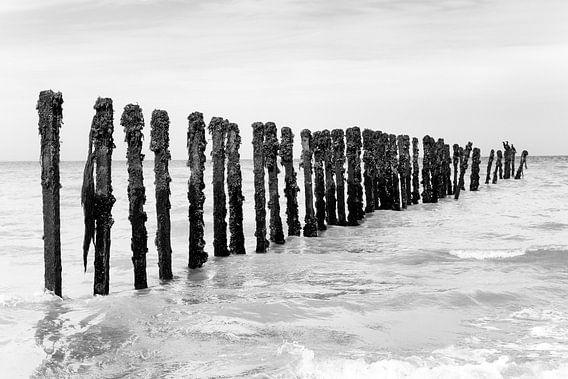 Golfbreker met Aalscholvers bij Omaha Beach (zwart-wit) van Evert Jan Luchies