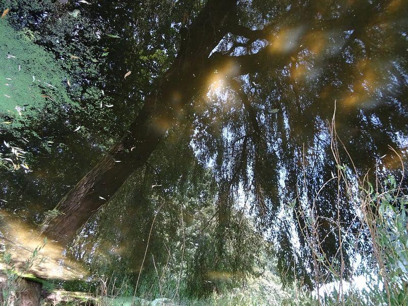 Urban Reflections 136 van MoArt (Maurice Heuts)