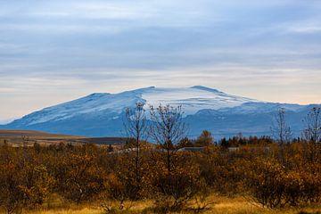 Herbstliche Szenerie Island von Coen Feron