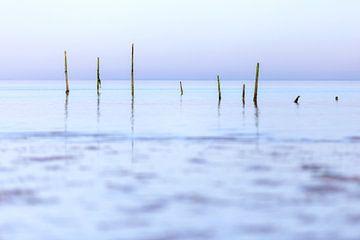 Palingfuiken op de Noordzee van Miranda van Hulst