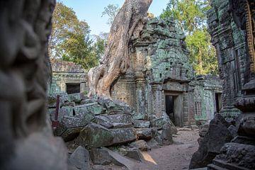 De Ta Prohm Tempel Cambodja   van Frank Verburg