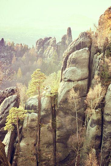 Rock formation in Saxon Switzerland van Michael Moser