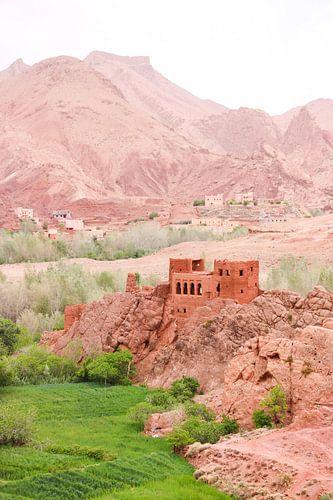 Roze Ruïnes: Dades Vallei, Marokko