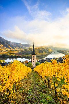 Wijngaarden in de ochtend in Bremm van Fotos by Jan Wehnert