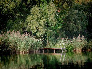 Sommeridyll von Ilona Picha-Höberth
