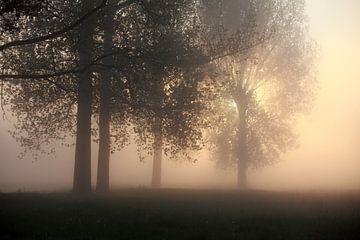 zonsopgang van Jana Behr
