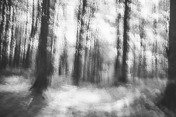 Verloren in het bos - abstracte infraroodfoto van Patrik Lovrin