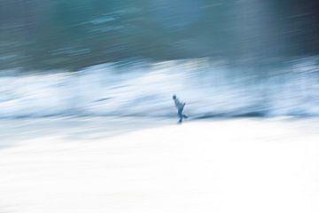schaatser van Helene de Jongh