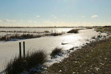 Ein Eisfeld auf dem Sneekermeer von Pim van der Horst