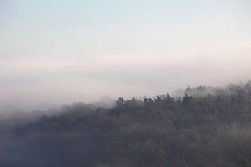 Mystischer Morgen von Thomas Jäger