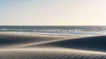 Dünen von Rik Verslype