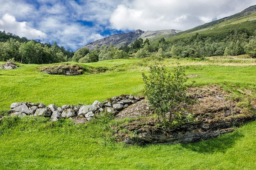 Landscape with mountains van Rico Ködder