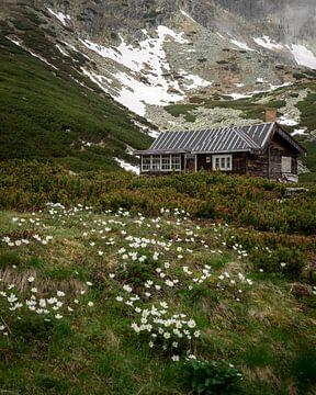 Berghütte in den Bergen der Slowakei von OCEANVOLTA