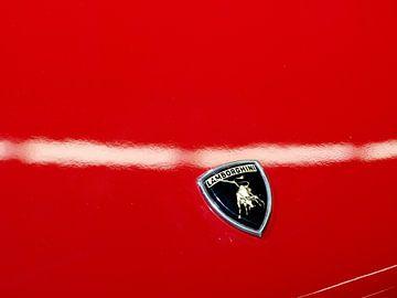 Lamborghini logo sur Thijs Schouten