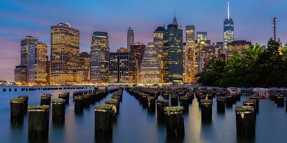 Ongelofelijk uitzicht op New York van Roy Poots