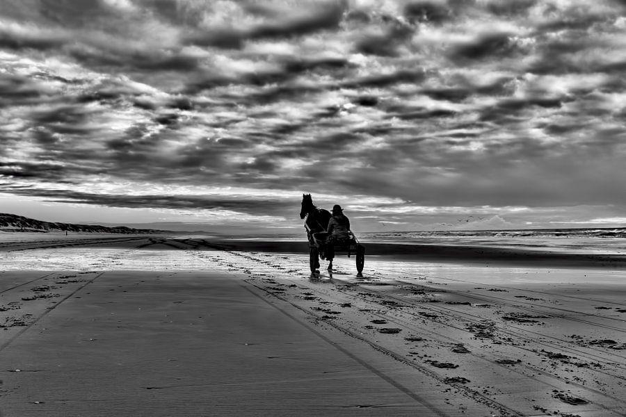 paard en sulky op het Hollandse  strand in zwart-wit