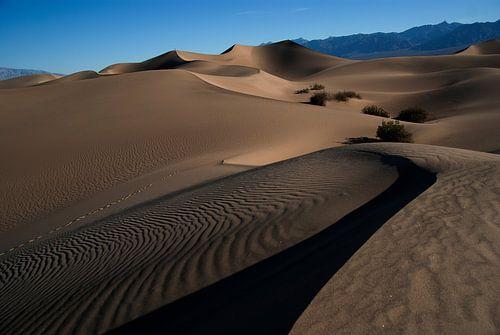 'The dunes' van