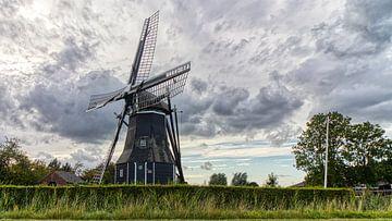 Vue du moulin de Nisse sur Fotografie in Zeeland
