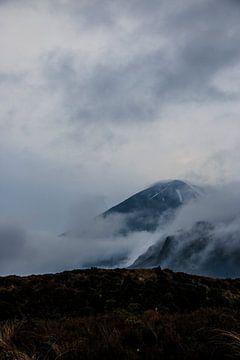 Tonariro Gebirge von Marieke de Lange